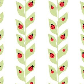 Red Ladybugs On Vine