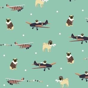 Aviator Pug