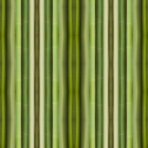 Green Bamboo Symmetry