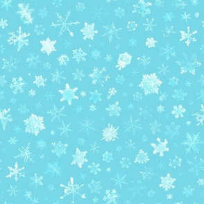 photographic snowflakes on pale cyan (large snowflakes)