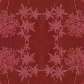 solar print flowers - anthotype