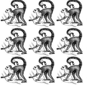 Classic Monkeys