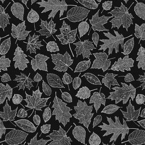 small leaf etchings - film negative