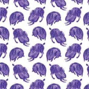 plum bunnies