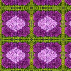 Purple Mosaic_4689