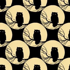 Owl in Black