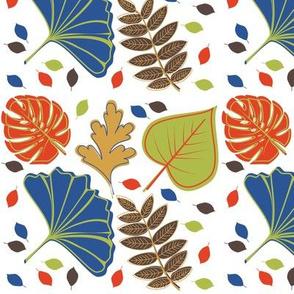 Colorful Fall Colorful Autumn