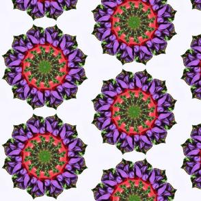 Mandala iris 1