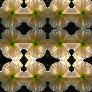yellow flower miror repeat