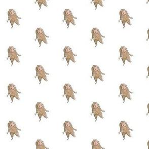hedgy hedgehog