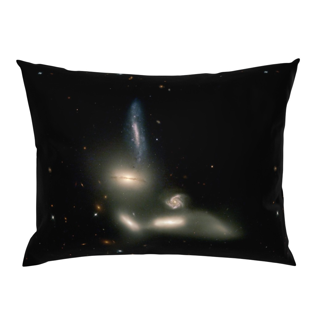 Campine Pillow Sham featuring The Great Bird of Space by datawolf