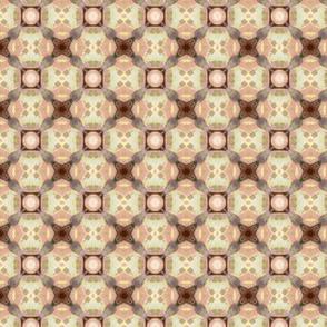 Rodgersia pattern V