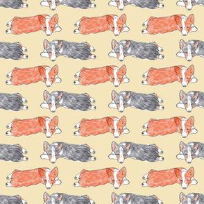 Lazy Pembroke puppy sketch - tan