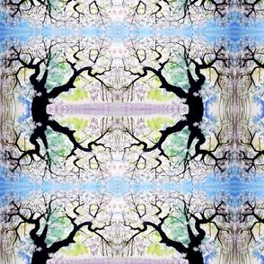 our_neighbor_s_tree__sm