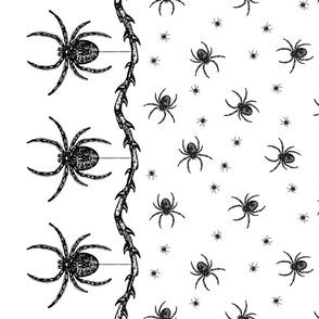 Spider Border (black on white)