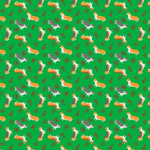 Ditzy seasons - Christmas Pembrokes