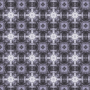 purpleshades-ch-ch