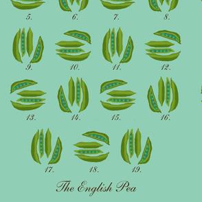 the_english_pea