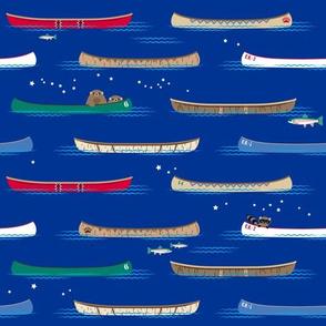 Lake Canoe under the Stars