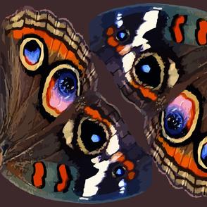 Buckeye Butterfly Wings