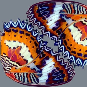 Red Lacewing butterfly wings
