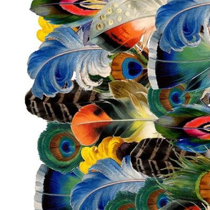 Rainbow Feathers Border