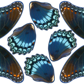 Red Spotted Blue Butterfly Costume Wings