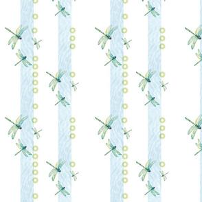 Dragonflies dancing