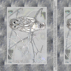 Owl Placemats