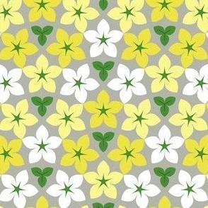 01519571 : arrow4m 2 square
