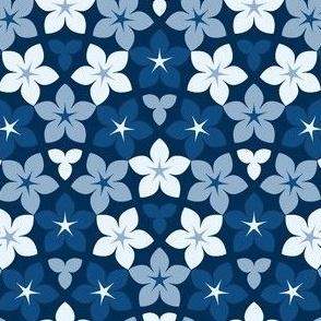 01520166 : arrow4g X : inferno