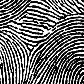 Fingerprint stripes black & white