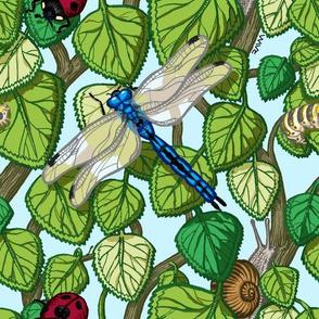 bugs in the bush