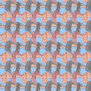 Dachshund faces - blue
