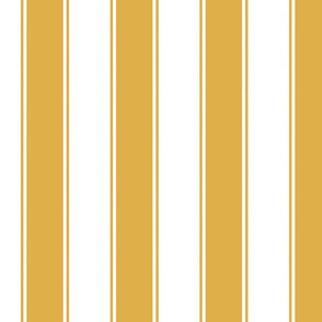 Chunky Stripes Cabana in Gold or Honey