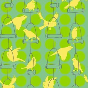Swinging Canaries