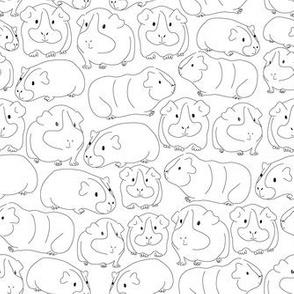 Sketchy Guinea Pigs
