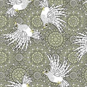fancy flight  white birds