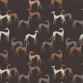 Sighthounds brown