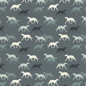 Deerhounds