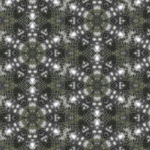 Spider Web in Black