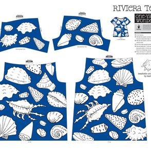 seashells under the sea