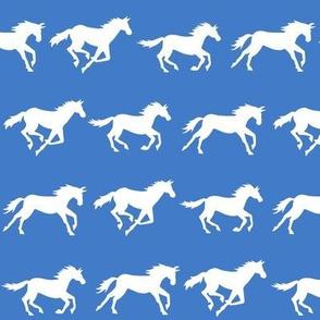 gallop - bright blue