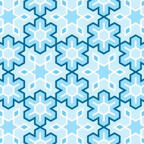 01630872 : snowflake 6 : Ac