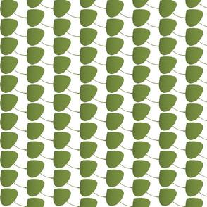 Leaf-Aspen-green