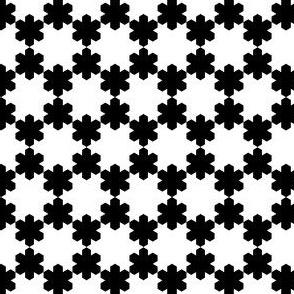 01632704 : snowflake 6 : K+W