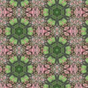 Pink Hydrangea Kaleidoscope