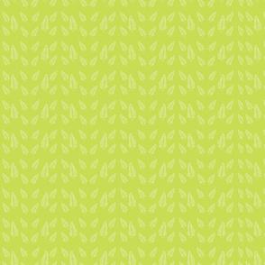 ferns_white