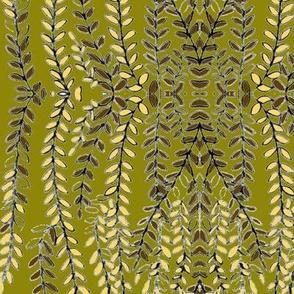 oliveforsythia