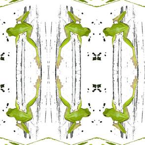 green_tree_frog